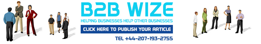 b2bwize.com