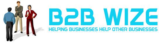 b2bwize.com